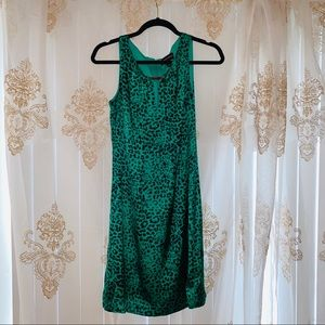 Green Cheetah Leopard Shift Dress 🐆Dana Buchanan